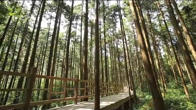 潮流假期——姑婆山、玉石林篇