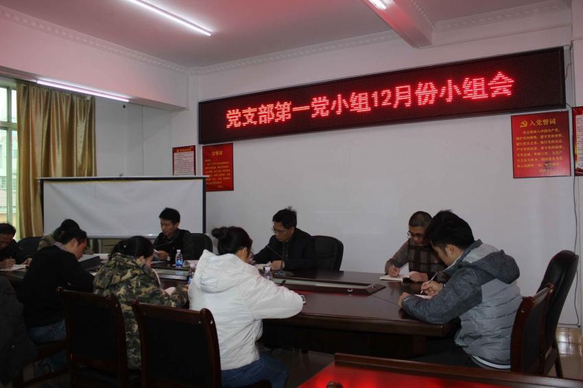 市规划局党支部第一党小组召开12月份党小组会议