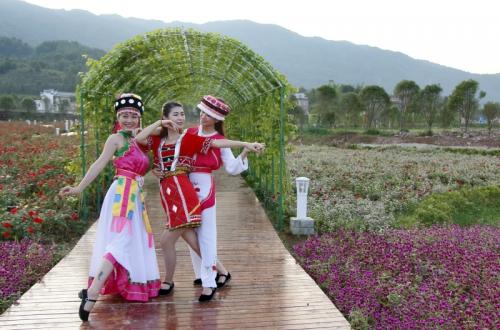 花海民族舞
