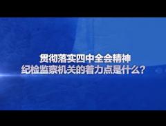 视频专访丨贯彻落实四中全会精神,纪检监察机关的着力点是什么?