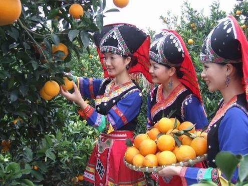 贺州富川脐橙